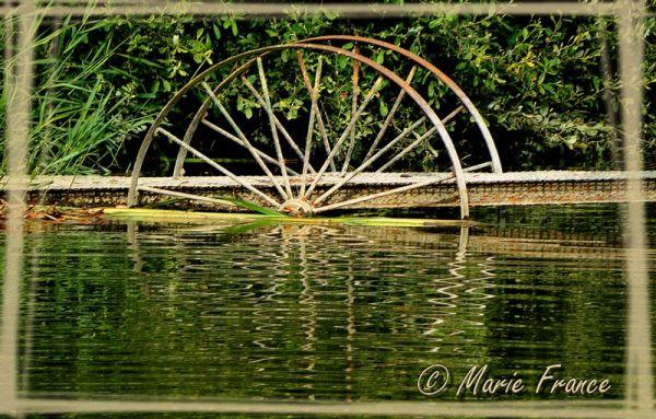 Ponton sur roues dans une rivière