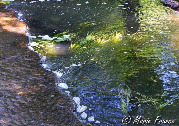 Rivière sous un barrage...