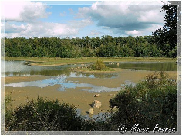 Marais en bordure du Loir