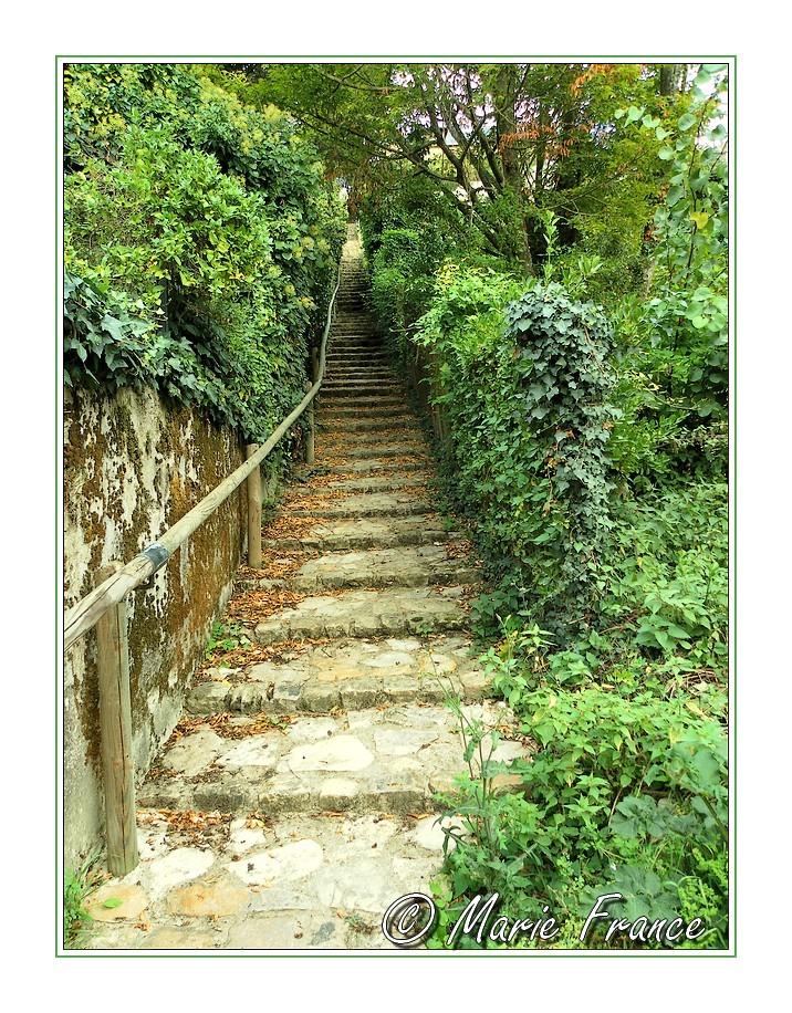 chemin en escalier