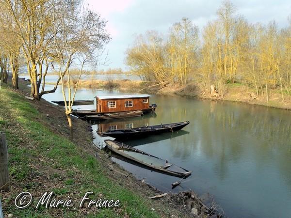 En bordure de Loire, une bouère