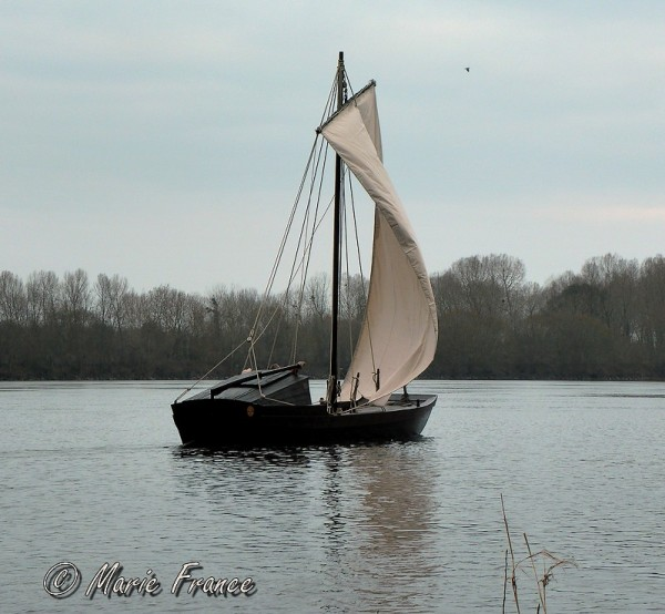 Cabare à voile sur la Loire