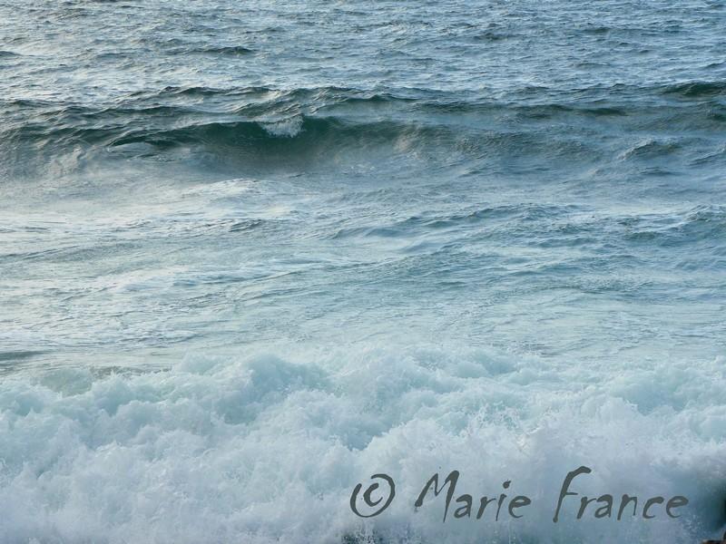 mer avec vagues