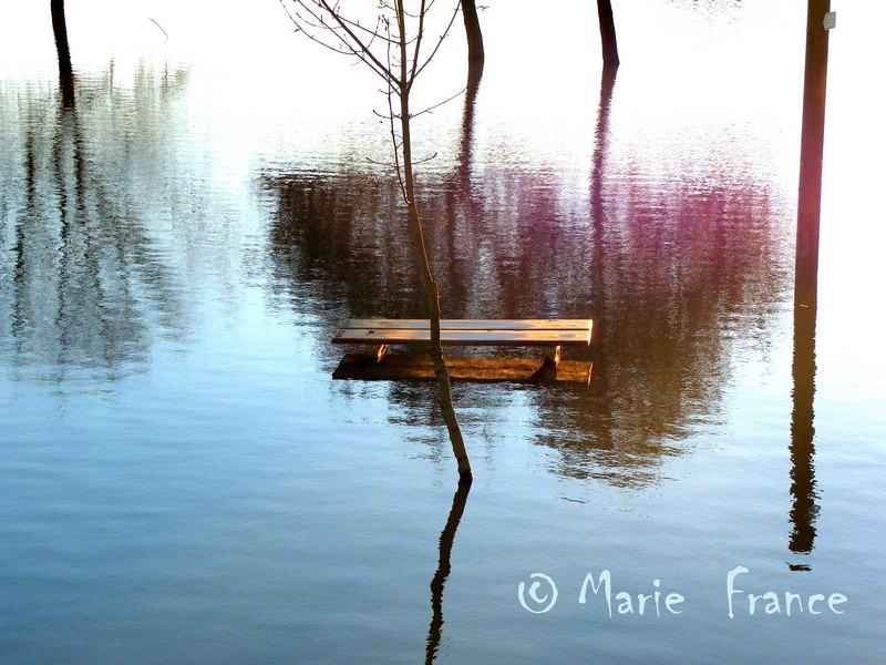 endroit innondé avec reflets