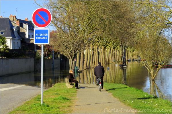 Inondation rue sur berge à Angers