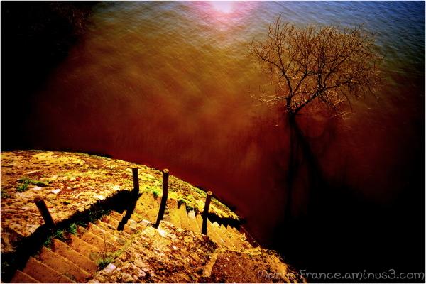 Escalier descendant vers l'eau