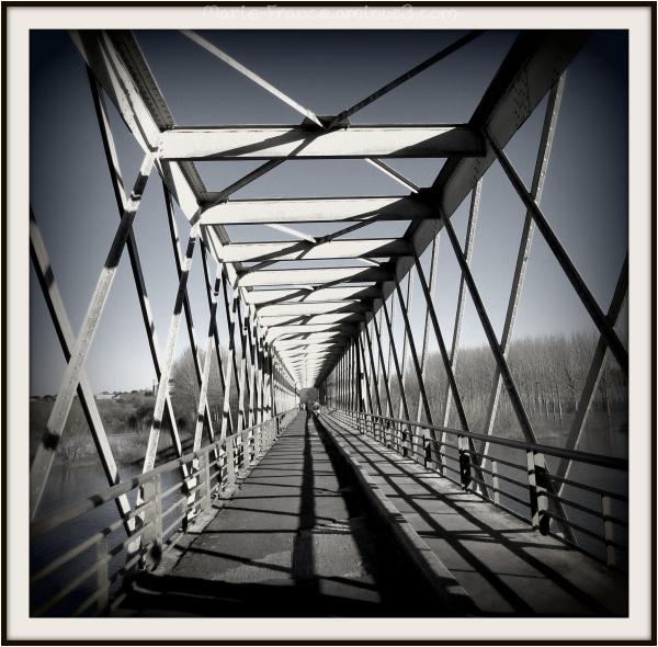 Pont de Pruniers en Maine et Loire