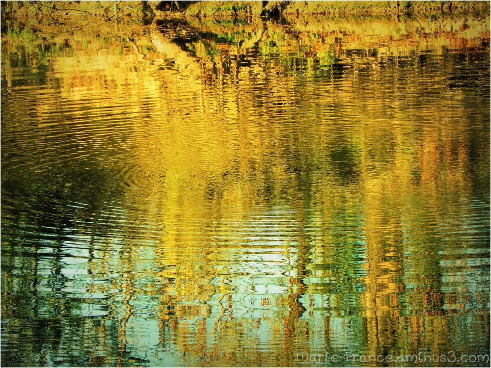 reflets, divers, rivière