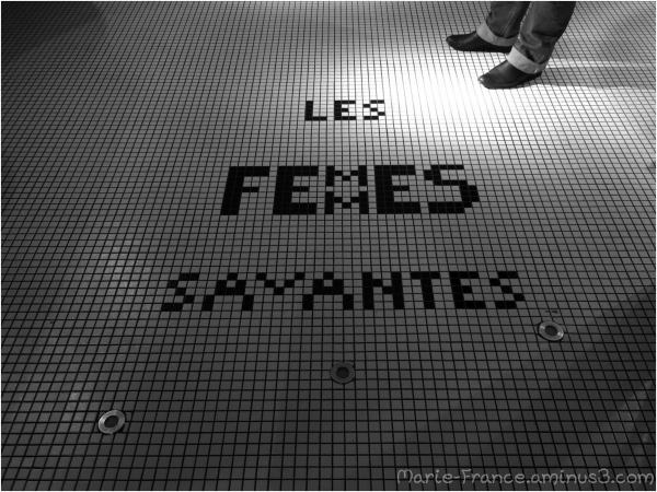 """""""Les femmes savantes"""" inscrite sur le sol"""