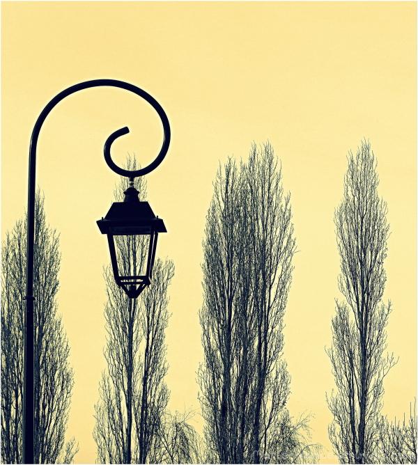 lampadaire devant des arbres...