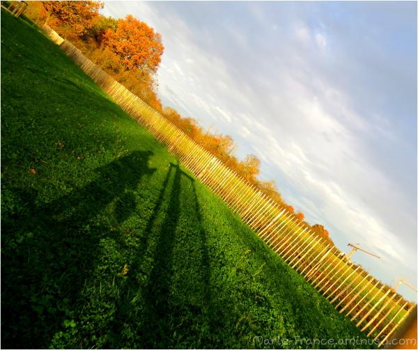 Photo en diagonale....