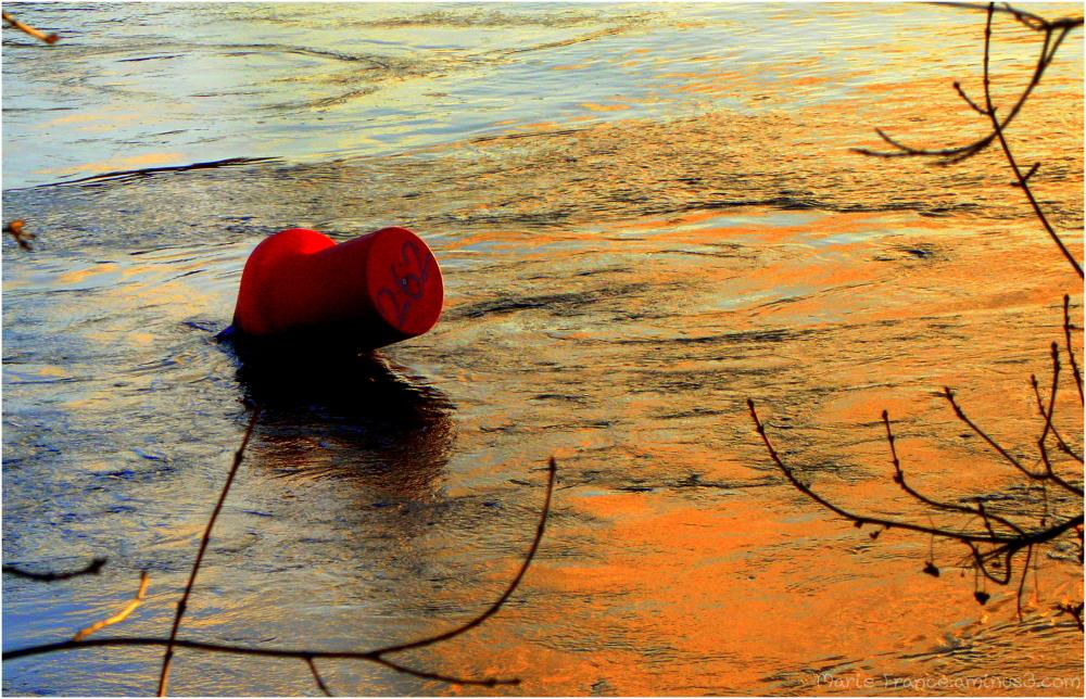 Une bouée rouge en Anjou