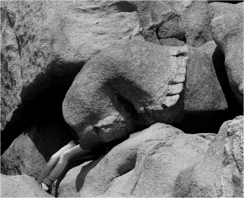 Un rocher à Ploumanach