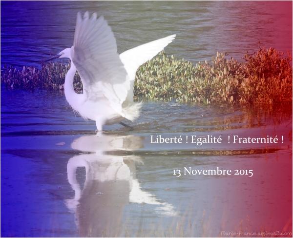 Journée de deuil national ...