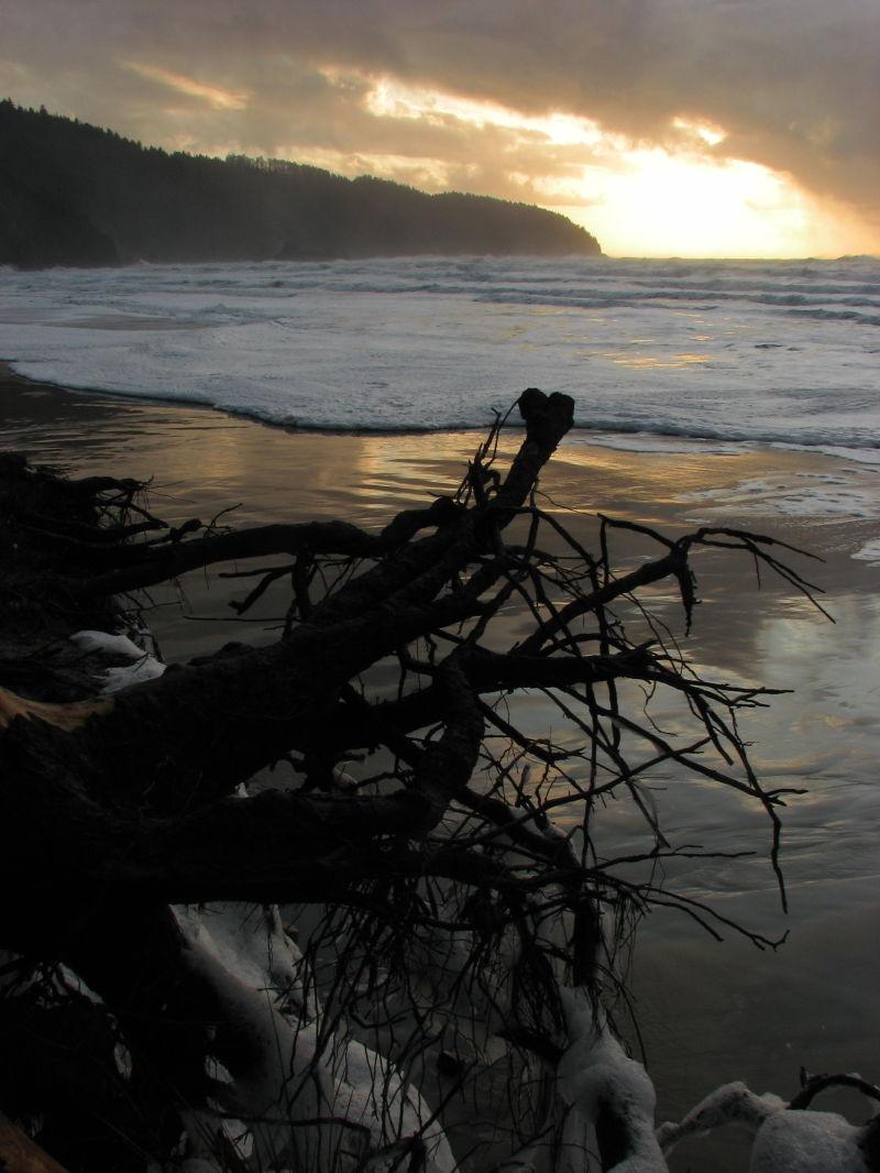After the storm - Cape Lookout - Oregon Coast