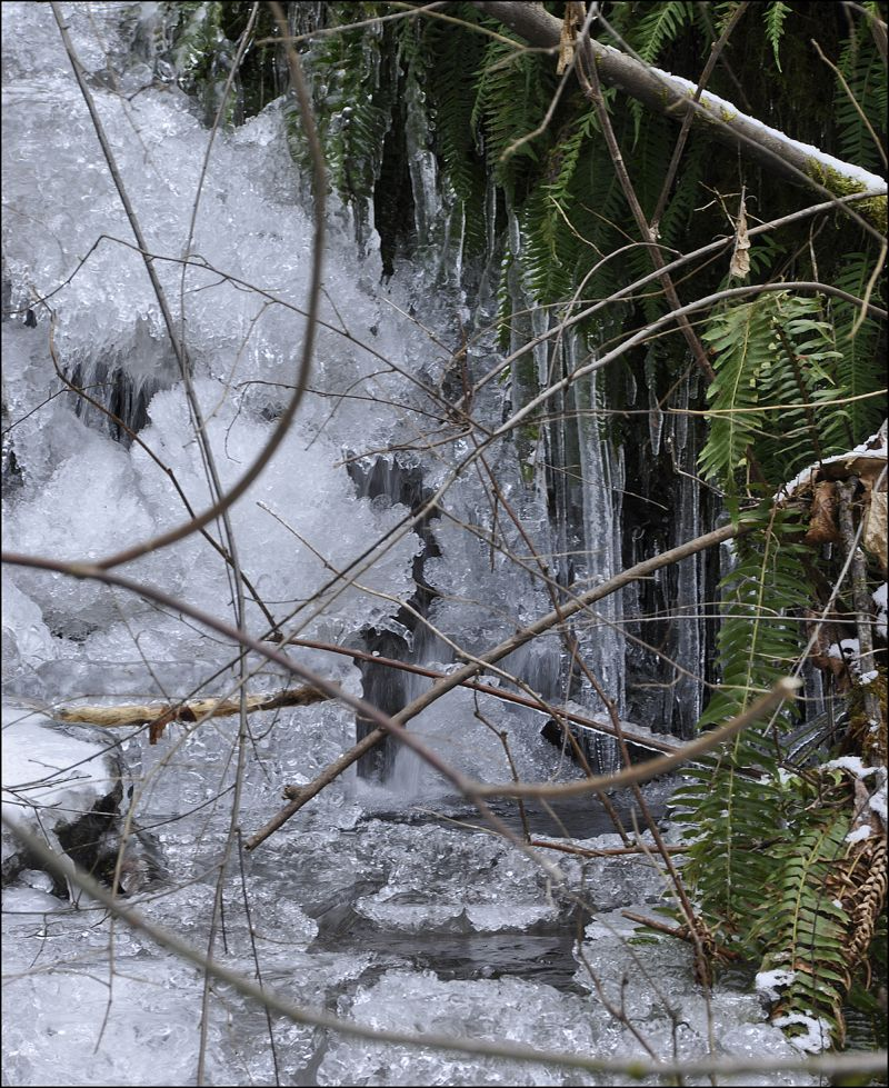 winter NW