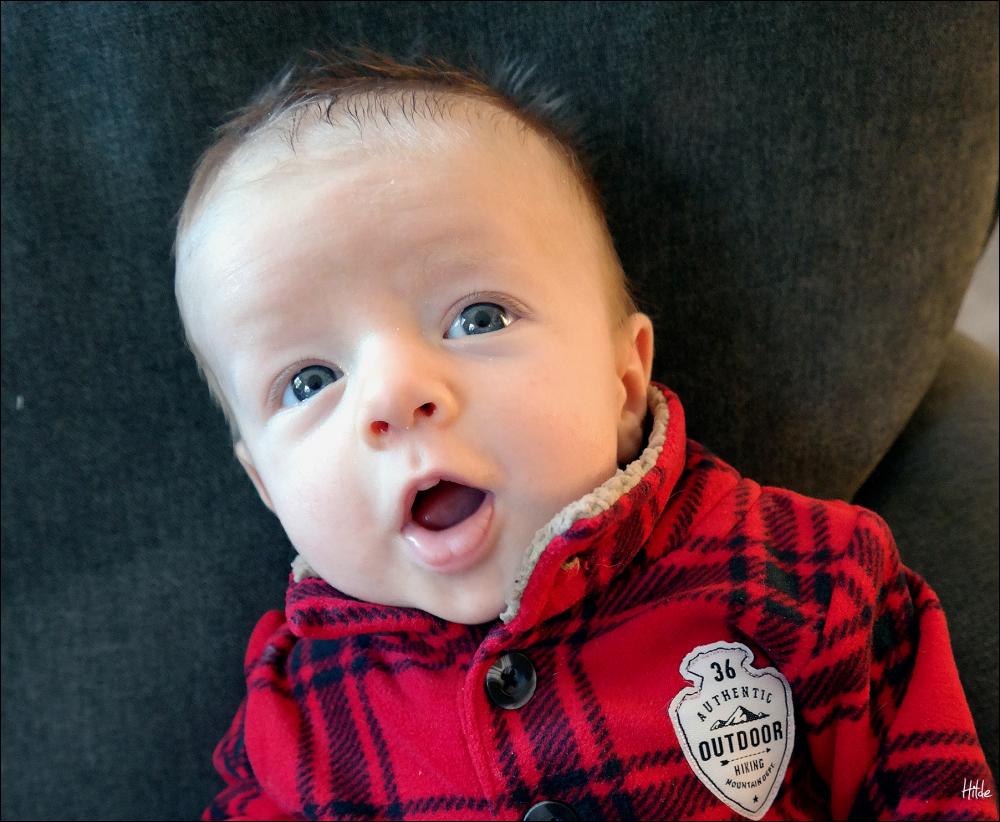 Finn at 2 months