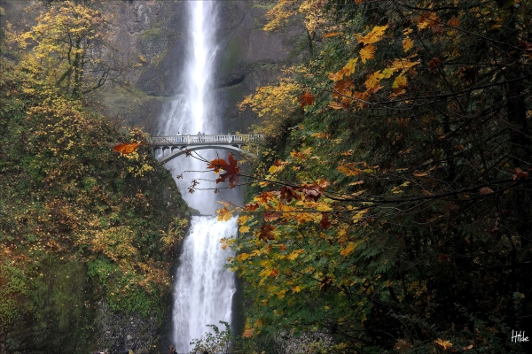 The bridge of Multnomah Falls