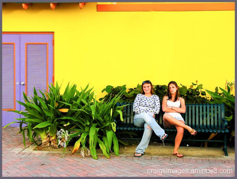 Nassau Colors W/O Tree