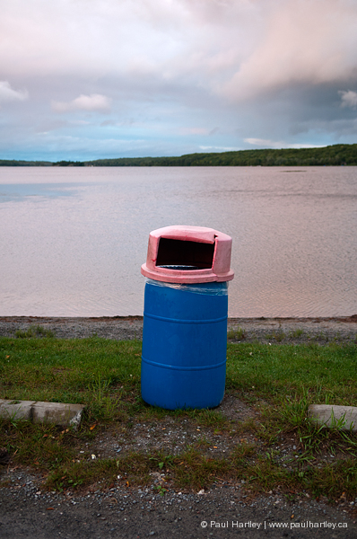 blue plastic garbage with pink lid by a lake