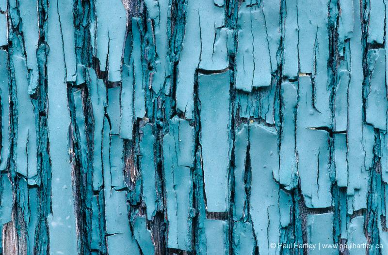close up of light blue peeling paint