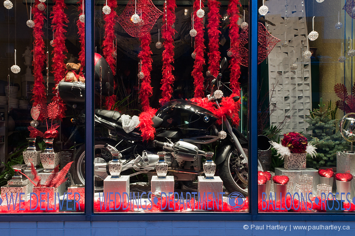 bmw motorcycle in store window with red feathers