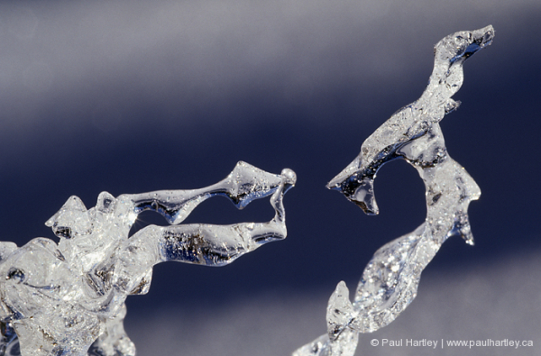 close up of ice shapes