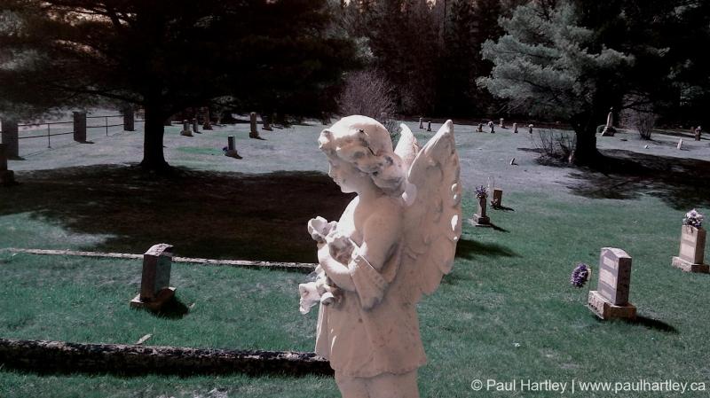 stone angel grave