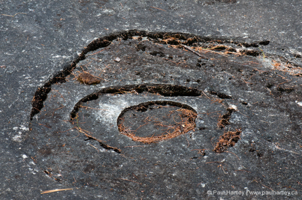 eye shape form in rock