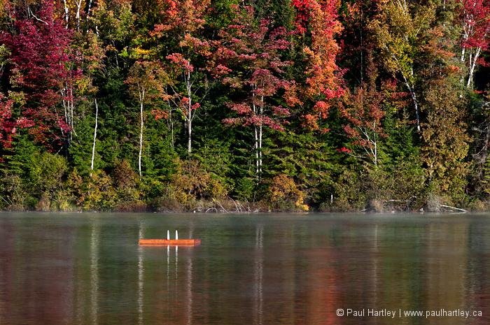 swimming raft in autumn