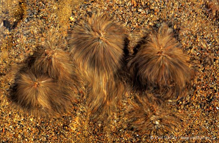 sand movement from underground spring