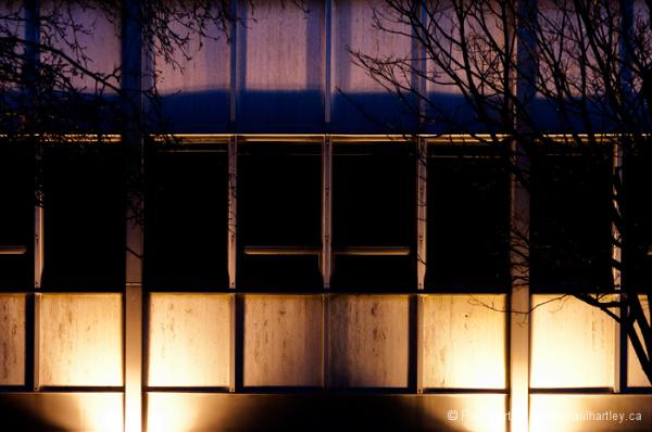 windows at night