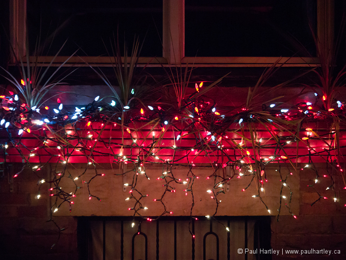 lights in window flower box