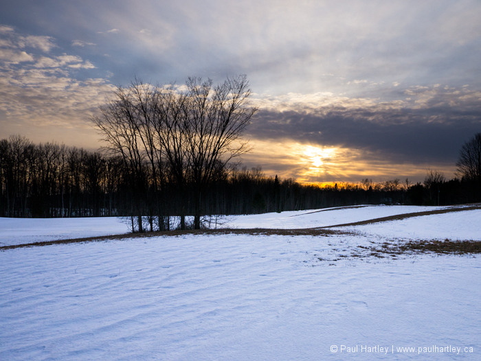 Farmers field in winter
