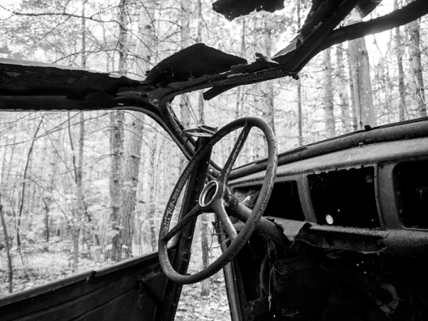 Steering wheel of a relic car left in a forest
