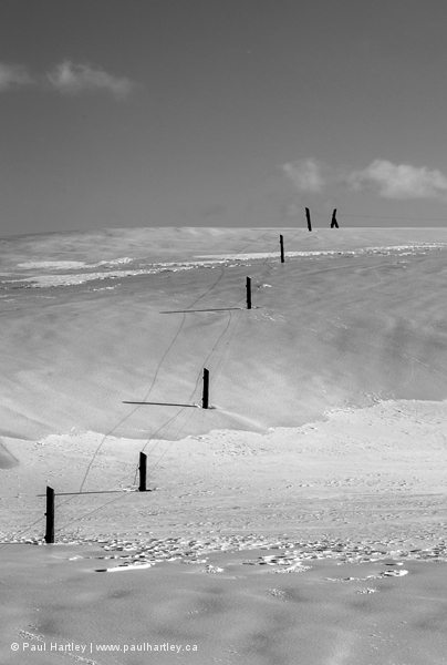 Fence in a field in winter