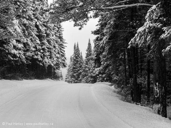 Opeongo Road in Winter
