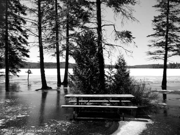 Flooded picnic area