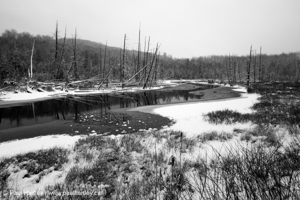 snowy creek in Ontario