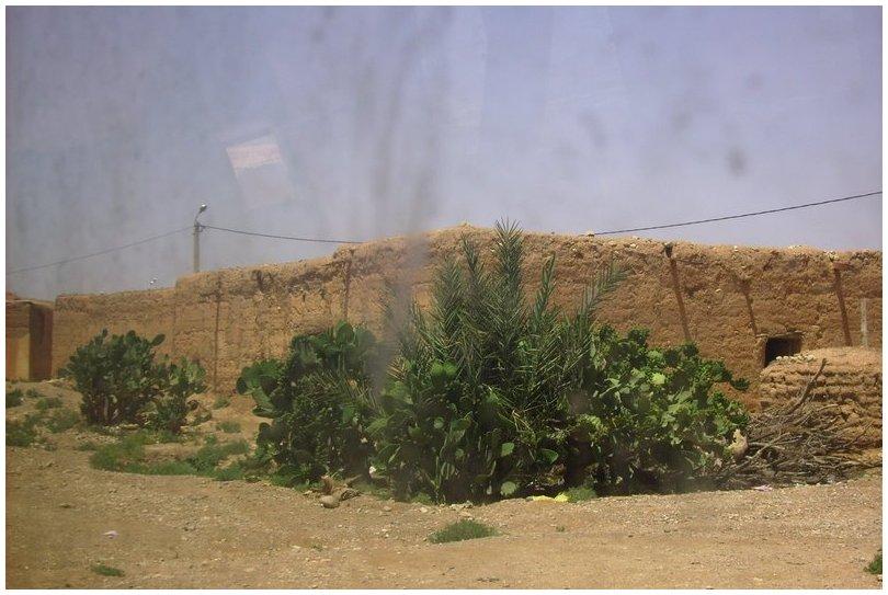 Le chemin vers Tagourast 9