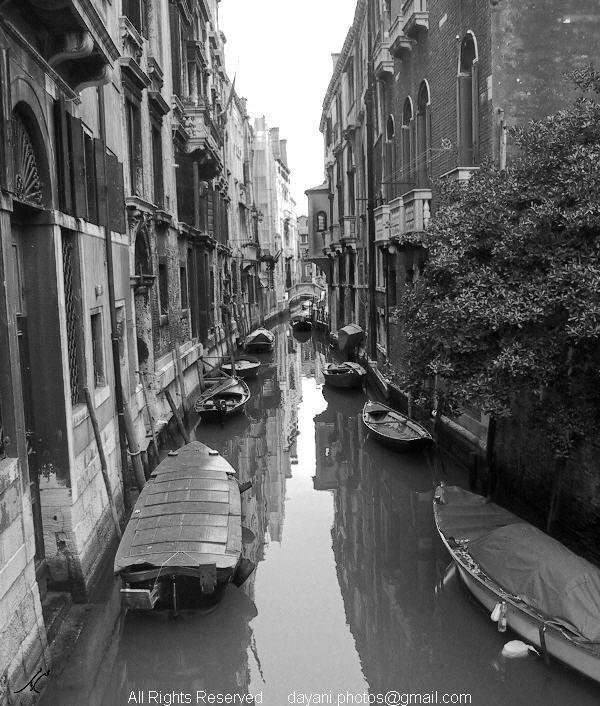 Venice Italy Mohsen Dayani محسن دیانی