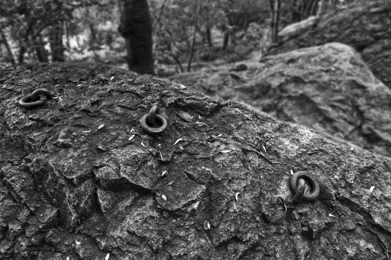 Iron rings and the rock