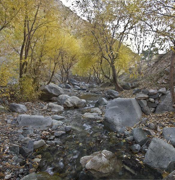 Autumn, Mohsen, Dayani, پائیز, محسن, دیانی