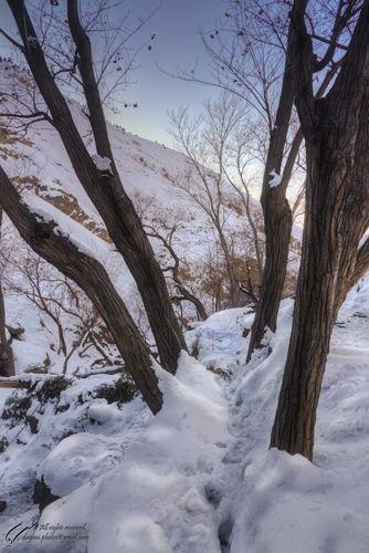 Foot prints, Snow, Mohsen, Dayani, محسن, دیانی