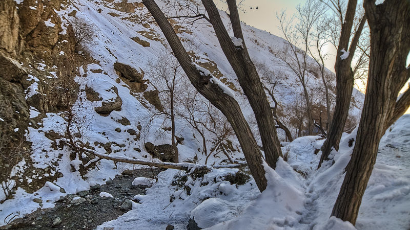 Darabad, Snow, Mohsen, Dayani, محسن, دیانی