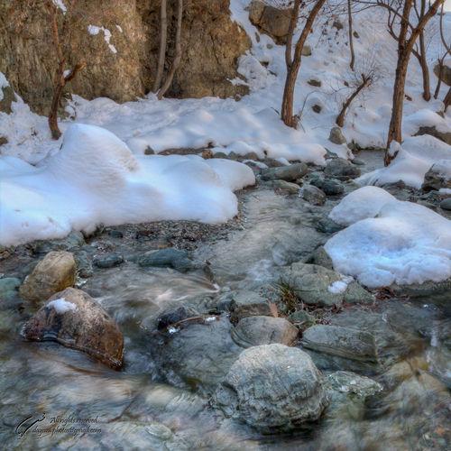 fresh, snow, water, Mohsen, Dayani, محسن, دیانی