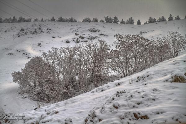 Snow, Sunrise, Mohsen, Dayani, محسن, دیانی