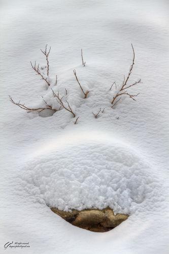 Snow, Stone, Rock, Mohsen,Dayani, محسن, دیانی