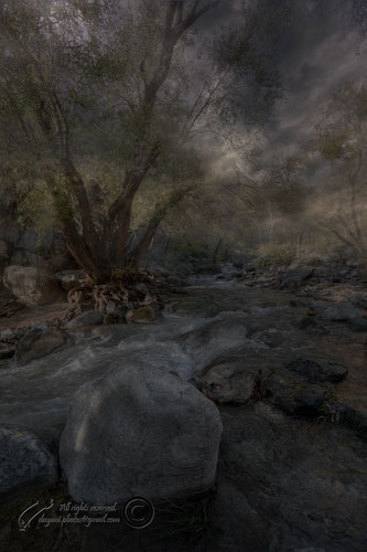 Darabad, River, Tehran, Mohsen, Dayani,محسن, دياني