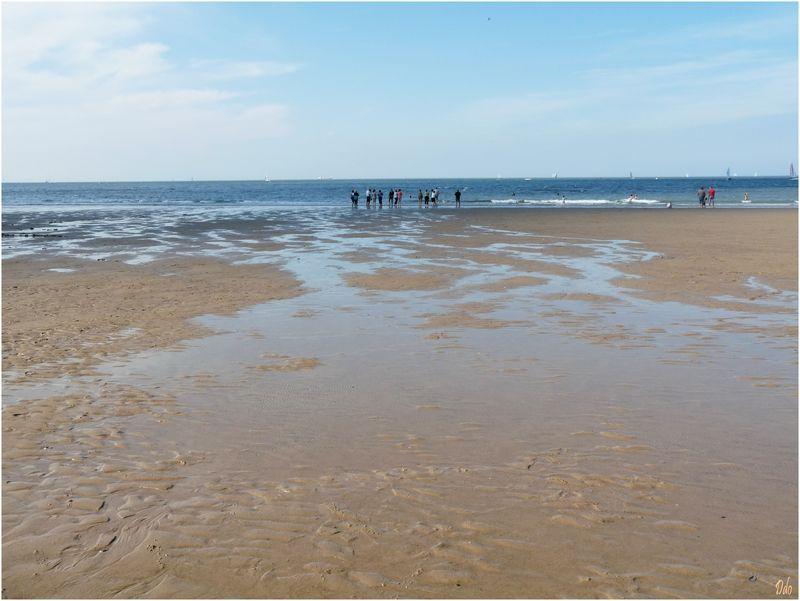 La mer s'est retirée